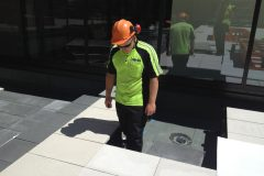 national-library-paving8